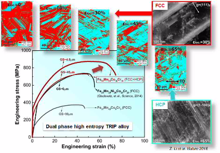 Dual phase HEA, duplex, combinatorial alloy design, high entropy alloys,alloy design, steel, mixing entropy, atom probe tomography, grain boundary