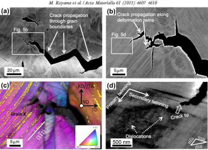 ECCI and EBSD maps of hydrogen embrittlement in TWIP steel (Acta Materialia 61 (2013) 4607).
