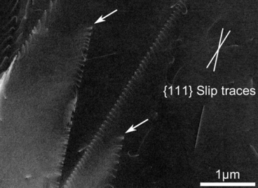 Dislocation pile up in a weight reduced (low density) steel observed by ECCI