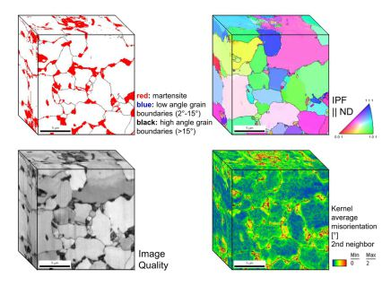 Dual phase steel microstructure revealed by 3D EBSD.