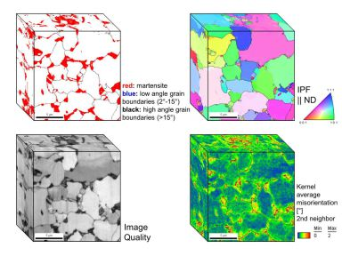 Dual phase steel microstructures studied 3D EBSD.