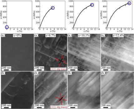 Interstitial high entropy alloy: In-situ ECCI observations of SF formation during tensile testing in (a) large (grain size ~7.8 mm); and (b) small (grain size ~3 mm) FCC g grains. The engineering stress strain curves given above indicate the corresponding