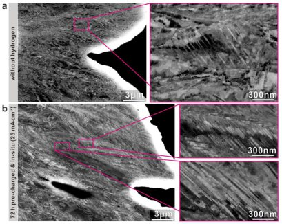 ECC images of deformation microstructures near the fracture surfaces of CoCrFeMnNi HEA  samples without and with hydrogen. (a) A few deformation induced nanotwins formed in the fractured sample  without hydrogen. (b) High density of nanotwins in the fract