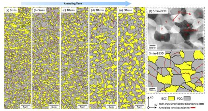 Ultra fine grained medium manganese steel microstructure:EBSD phase mapping of the steel samples intercritically annealed at 800 C for (a) 3 min, (b) 5 min, (c) 10 min, (d) 30 min and (e) 60 min; (f) Correlative ECCI and EBSD results for the 5 min anneale