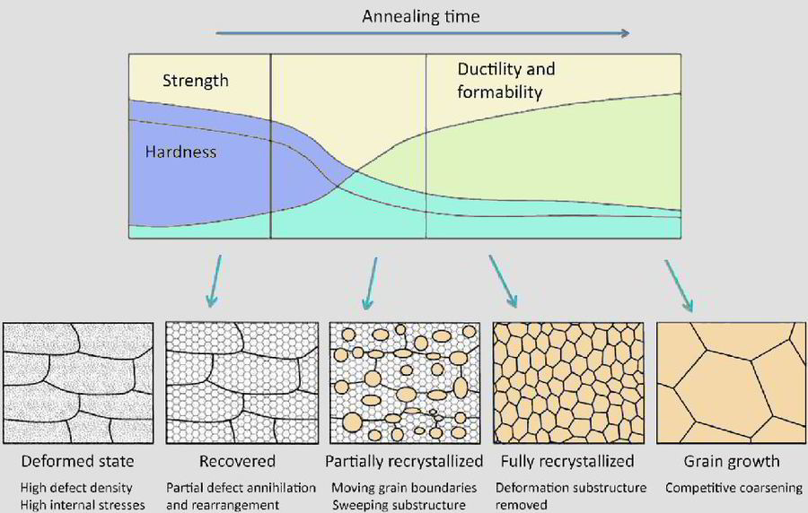 simulation of recrystallization and grain growth