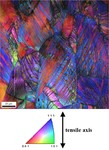 Overview TWIP twinning-induced plasticity ( TWIP ) steels, microstructure, ECCI, EBSD