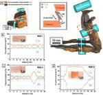 Atom Probe Tomography Steel