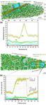 Atom Probe Tomography Nanosteel